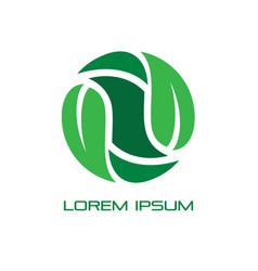 circle leaf eco nature logo image vector image