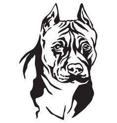 Decorative portrait of dog american staffordshire vector