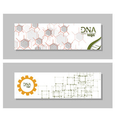 Dna molecule brochure template flyer layout vector