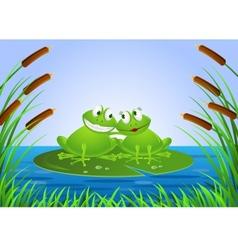 frog couple vector image