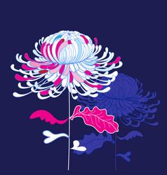 graphic beautiful chrysanthemums vector image