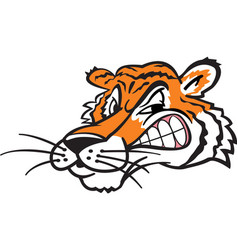 Tiger head logo mascot vector
