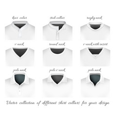different collars for your vector image