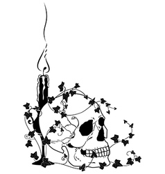 candle skull and ivy vector image