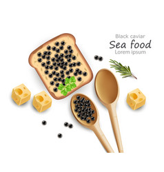 black caviar toast realistic top view 3d vector image