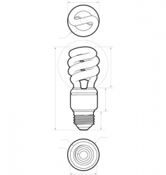 compact flourescent drawing vector image