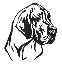 decorative portrait of dog great dane vector image