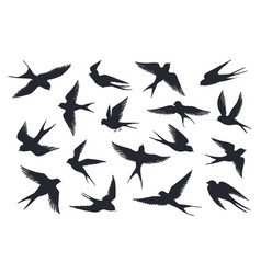 flying birds silhouette flock swallows sea vector image