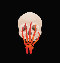 halloween or day dead skull with skeleton vector image
