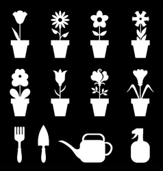 pot flower set black vector image