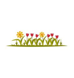 Garden flowers growing in flowerbed flat style vector