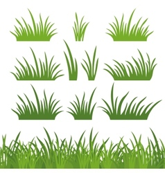 Green grass seamless and set vector image