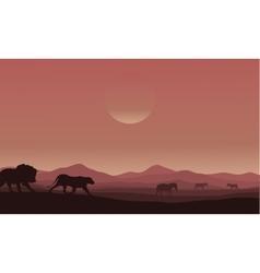 Silhouette of lion family in desert vector