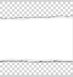 Torn snatched elongated piece white paper vector