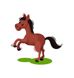 Adorable brown horse standing on its hind legs on vector