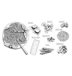 classic italian cuisine vector image