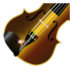 fiddle closeup vector image