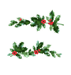 Holly nature branches set vector