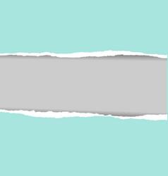 pastel torn paper vector image