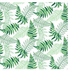 Pattern of fern leaf vector