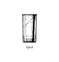 Tumbler glass highball vector