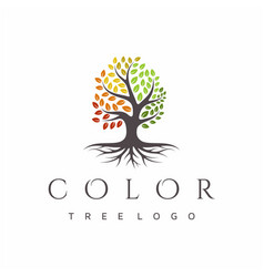 Vibrant tree logo design root tree life logo vector