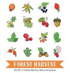 Berries nuts element set seamless pattern vector