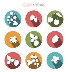 Fruit icon set vector image vector image