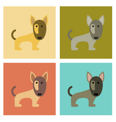 Assembly flat icons pet dog pitbull vector