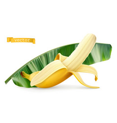 banana on green leaf fresh fruit 3d realistic icon vector image