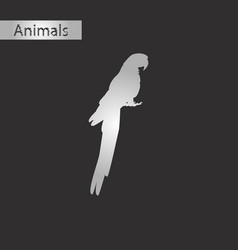 Black and white style icon of parrot vector