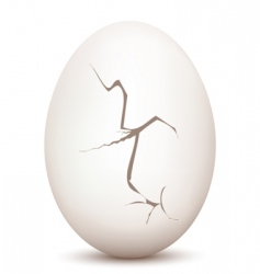 cracked egg vector image