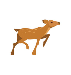 Fallow sika roe deer running wild animal cartoon vector