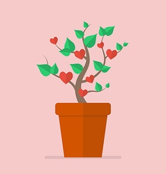 Plant with hearts flat icon vector image