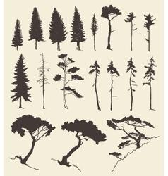 Set trees vintage hand drawn vector