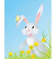 spring hare with butterfly vector image