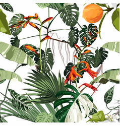 tropical beautiful flowers pretty pattern vector image