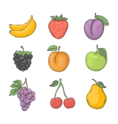 Fruit and berry set vector