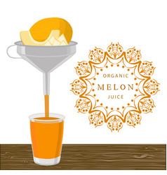 the theme melon vector image
