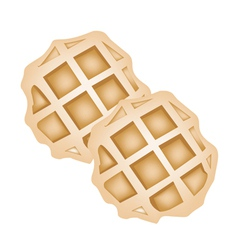 Two Baked Round Waffles on White Background vector image vector image