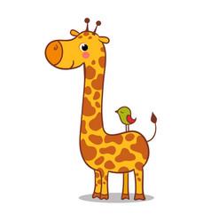 Cute giraffe calf standing vector