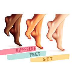 Different female feet set vector