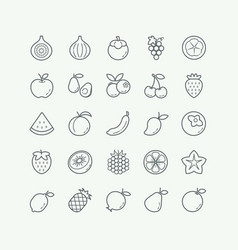 Fruit thin line icons set vector