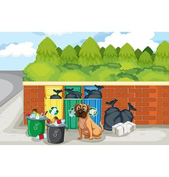 Garbage and dog vector
