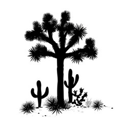 outline landscape with joshua tree and cacti vector image