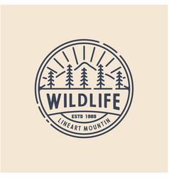 retro vintage line art evergreen pines spruce vector image