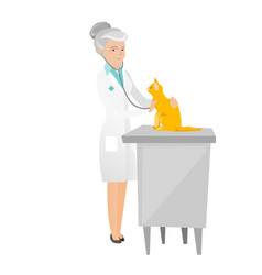 Senior caucasian veterinarian examining cat vector
