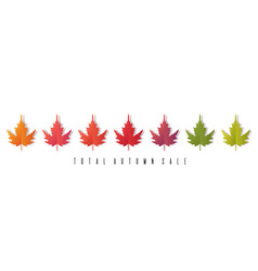 total autumn sale banner colorful leaves on white vector image