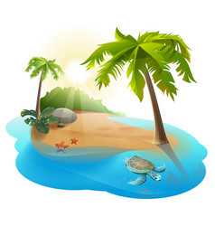 tropical island with palm tree and turtle vector image vector image
