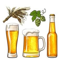 Set of beer bottle mug and glass malt hop vector image vector image